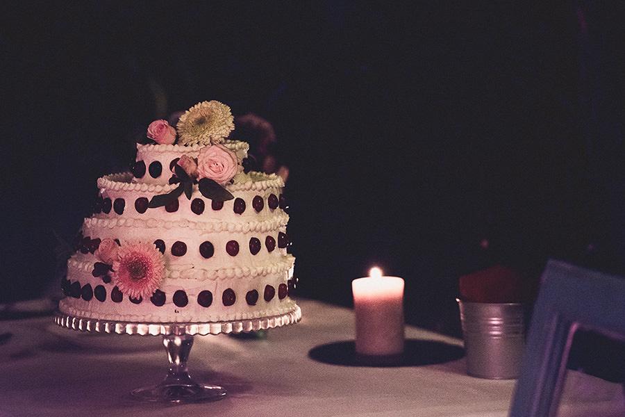 vis-wedding-089